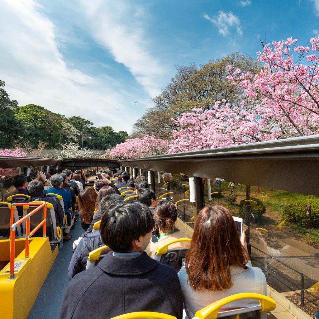 7 Tips Hemat Jalan Jalan ke Jepang 7