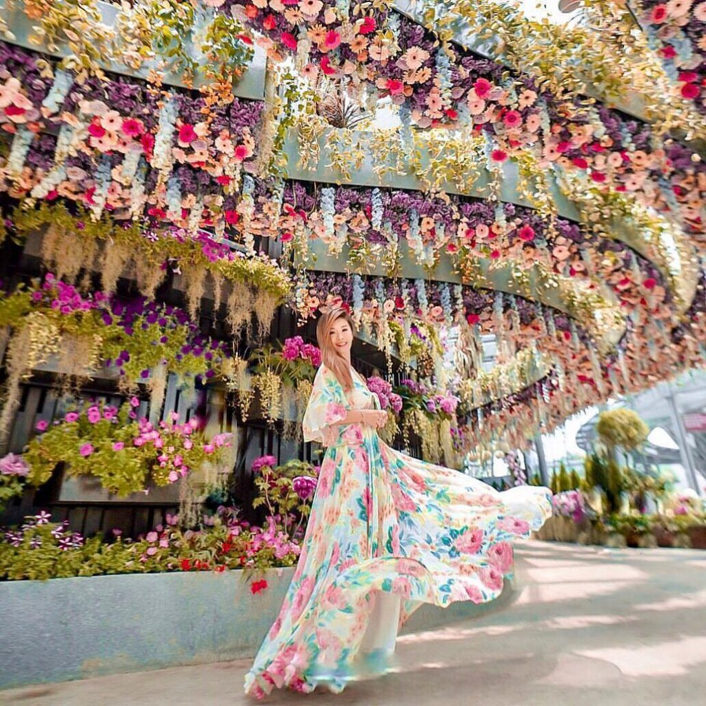 cara ke Singapura dari Malaysia: Gardens by the Bay