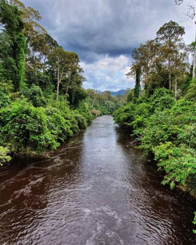 Sungai di Malaysia : Sungai Maliau
