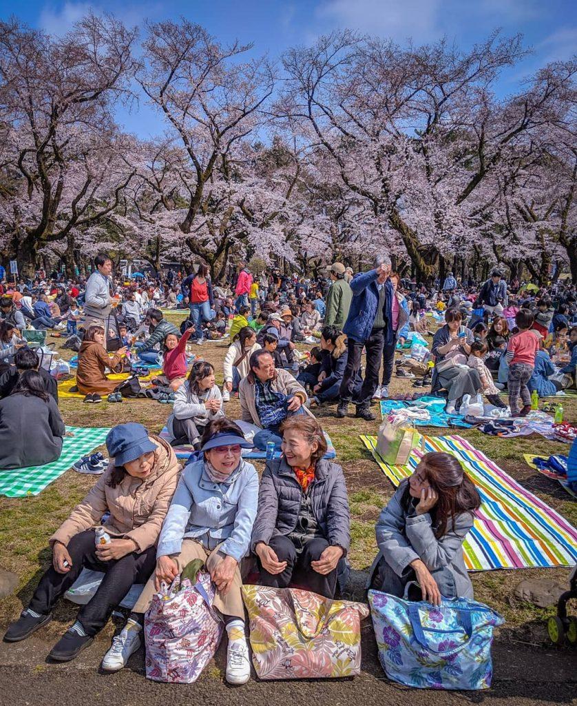 fakta jepang : japanese people