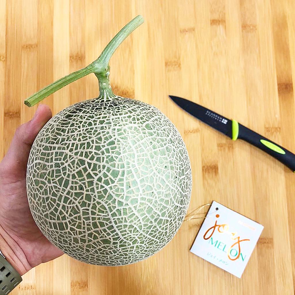 fakta jepang : melon jepang