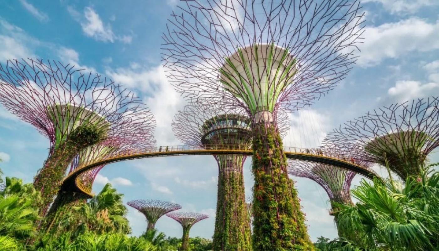 5 Hal Seputar Gardens By The Bay Yang Perlu Diketahui