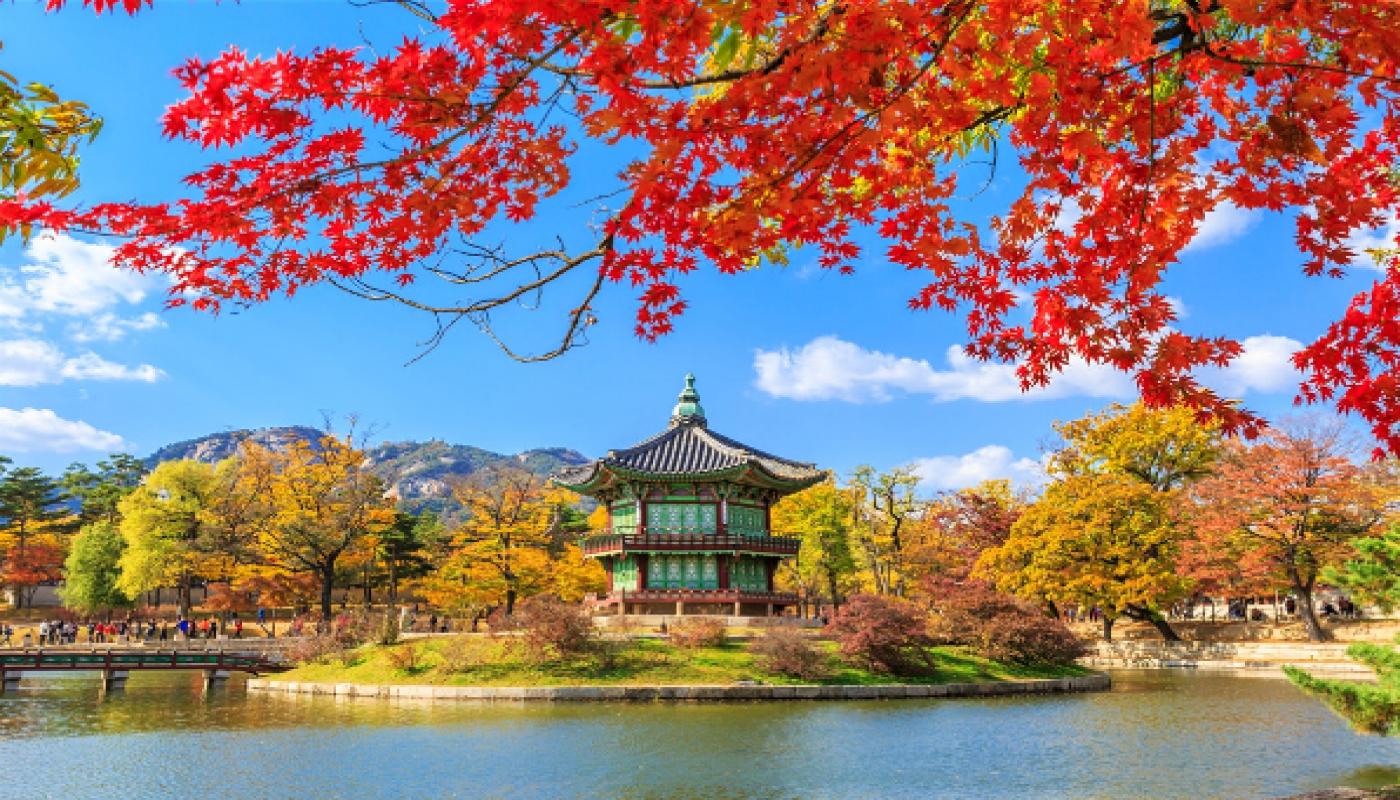 Dibalik Fakta Tentang Kehidupan Di Korea Selatan Ketahui 10