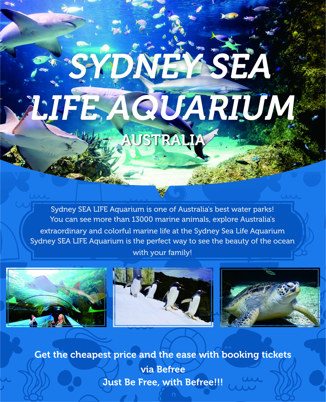 Sydney-Sea-Life-Aquarium
