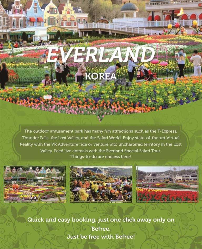 everland-ticket-admission-korea