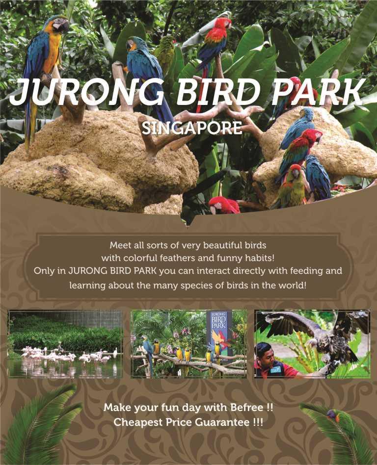 singapore-jurong-bird-park