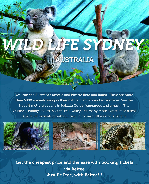 wild-life-sydney