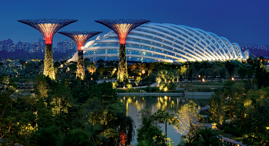 Combo Marina Bay Sands Skypark Observation Deck Gardens By The Bay Artscience Museum