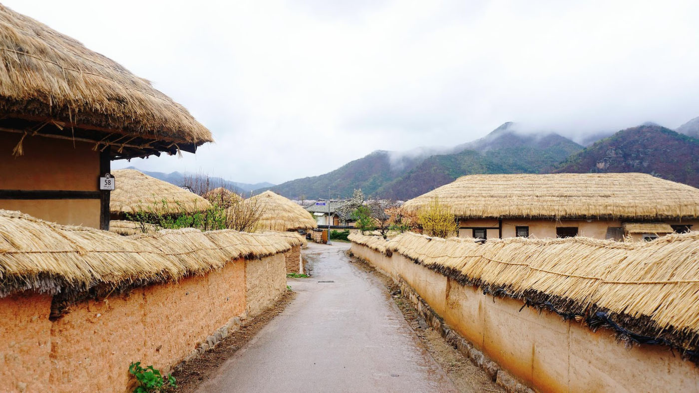 Full Day Andong Hahoe Folk Village Tour