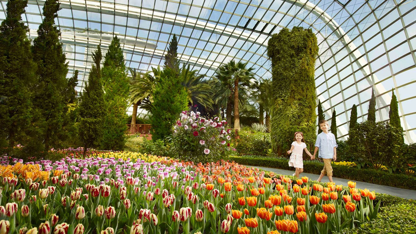 Singapore Flyer And Gardens By The Bay Package Garden Dewasa Tiket Image