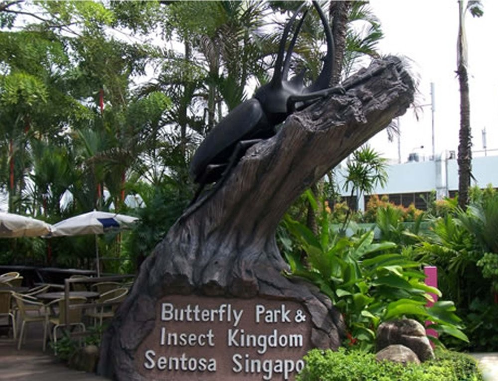 Butterfly dan Insect Kingdom Singapore