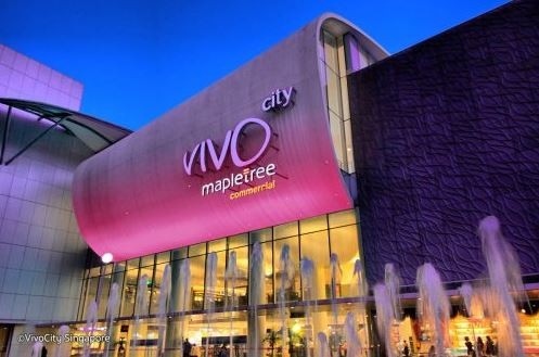 Vivo City Mall