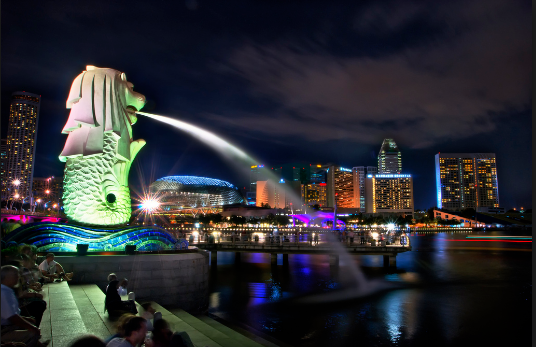 Merlion Park Night View